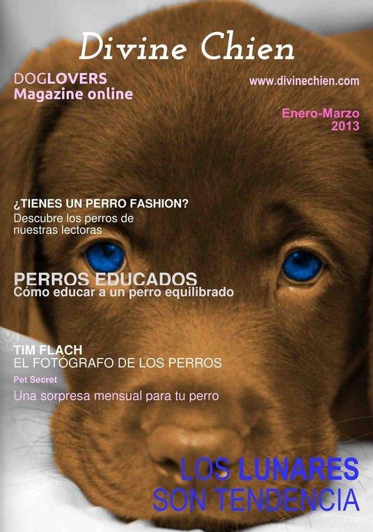 Divine Chien: revista online para perros