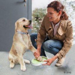 antibacterias perros