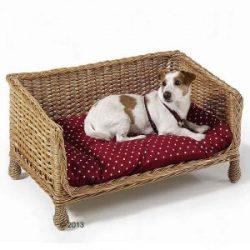 sofá de mimbre para perro