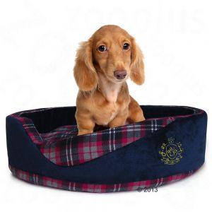 cama para perros elegante