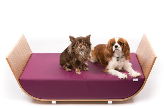 cama para perros exclusiva