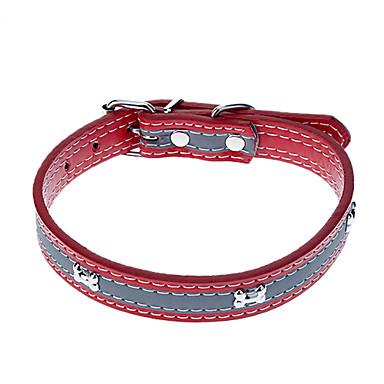 collar de cuero para perro