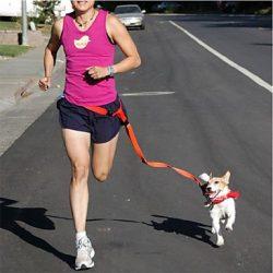 correa de perro para correr