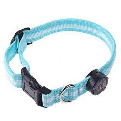 collar de nylon para perro