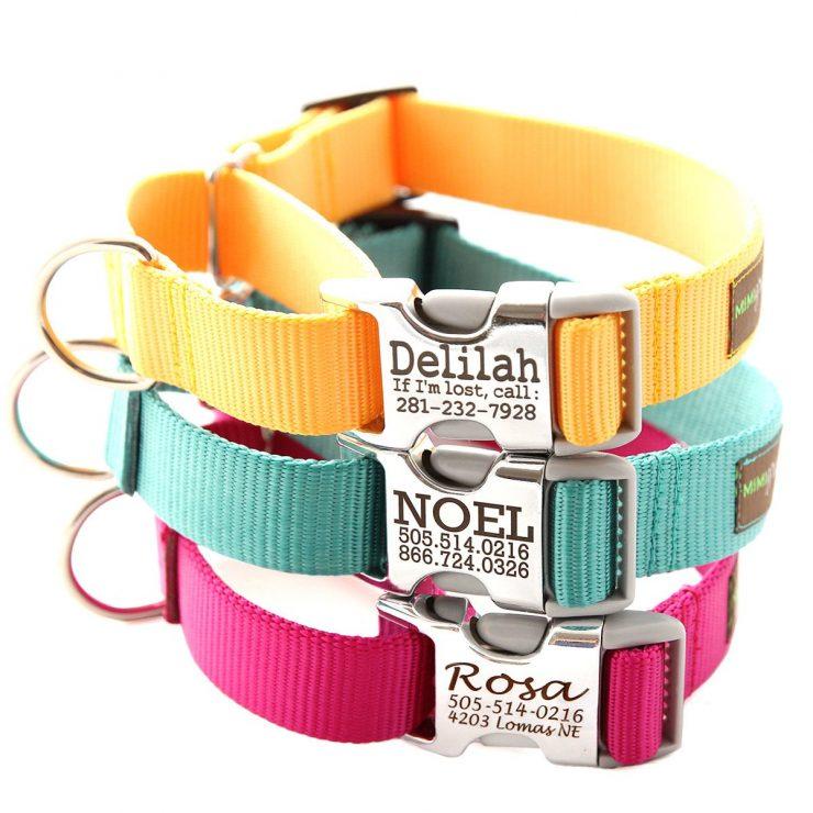 collar personalizado para perro