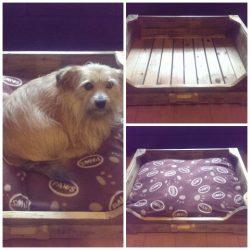 cama para perro de palet