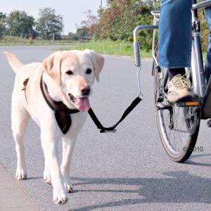 correa para perro para bici