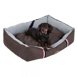 cama para perros campeones