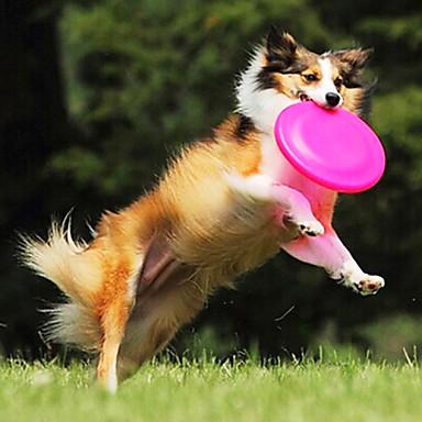 frisbee para perro