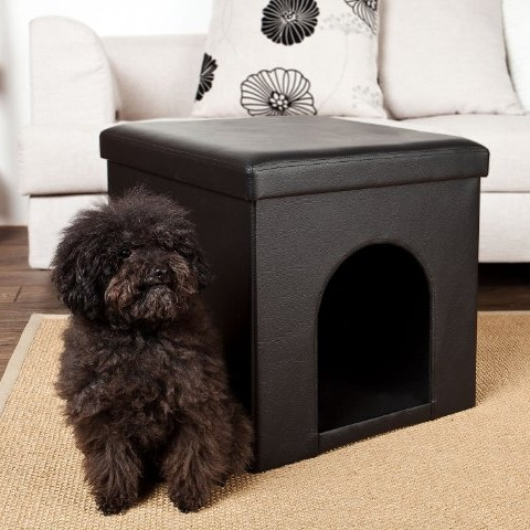 taburete y caseta de interior para perro