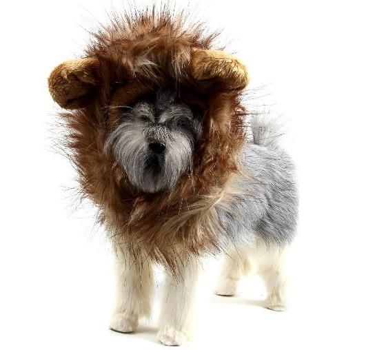 peluca de león