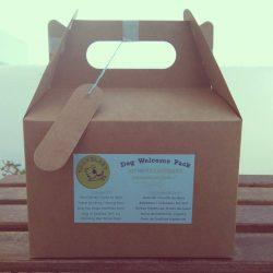 kit para perros viajeros