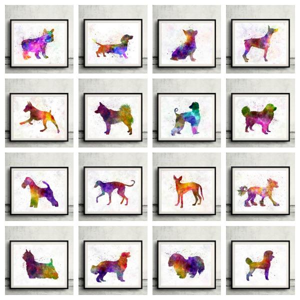 cuadros multicolor de perros