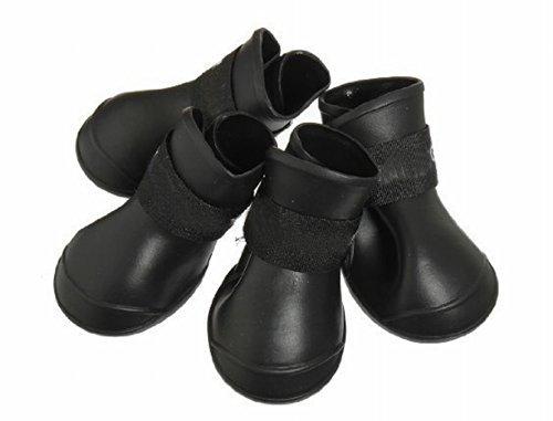 botas de lluvia para perros