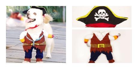 disfraz de pirata para perro
