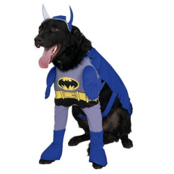 disgfraz de batman para perro