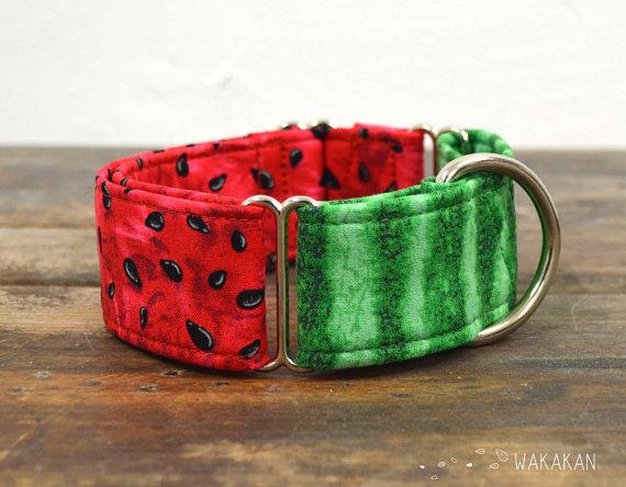 collar para perro de verano