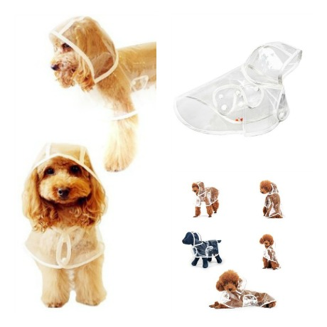 impermeable transparente para perro