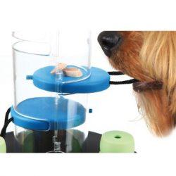 juego de inteligencia para perros
