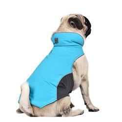 abrigo impermeable para perro