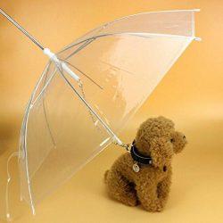 paraguas para perro
