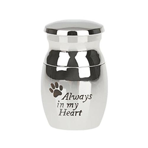 urna para perros