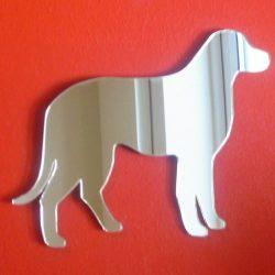espejo de perro