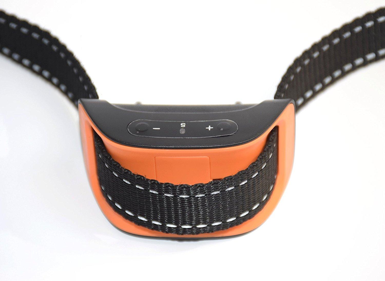 collar antiladrido