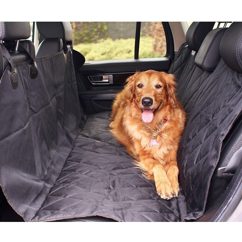 artículos para perros más vendidos en Amazon