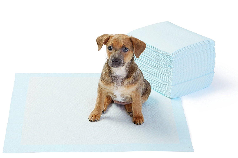 artículos para perros más vendidos