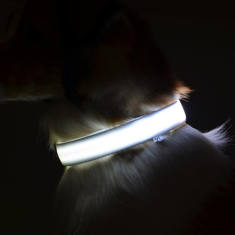 collares para perros con luces LED