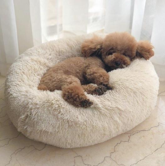 cama mullida para perros